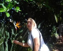 Tenerife,Loro parks - 1. foto