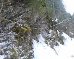 Meža taka (GSTAADe) - 3. foto