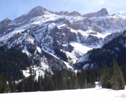 Šveices Alpi(GSTAADe) - 3. foto