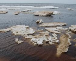 Pavasaris jūras krastā - 3. foto