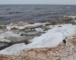 Pavasaris jūras krastā - 1. foto