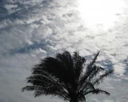 Pa ceļam no Asuānas uz Kairu - 1. foto