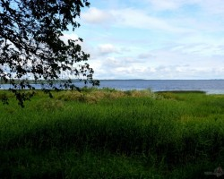 Latvijas skaistums