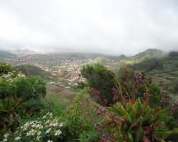 Kanāriju salas- Tenerife. - 3. foto
