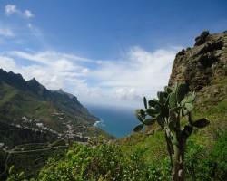 Kanāriju salas- Tenerife.