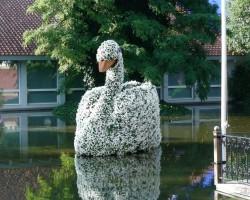 Dānija....., pils. Odense