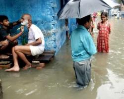 Indijas ikdienas ainiņas - 1. foto