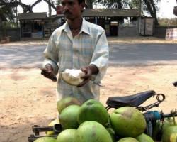 Indija - 3. foto