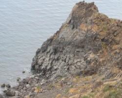 Skaistā un ziedošā Madeira - 2. foto