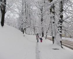 Snieg un sasnieg dziļi, dziļi sniegi;) - 1. foto