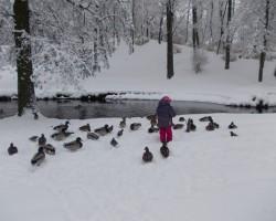 Snieg un sasnieg dziļi, dziļi sniegi;) - 3. foto