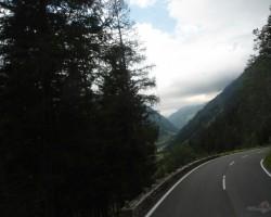 Kalnu cels